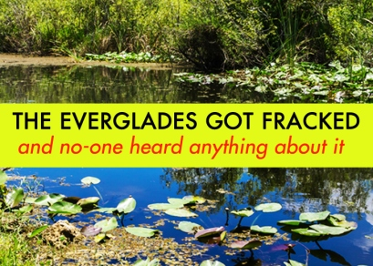 Everglades-Got-Fracked